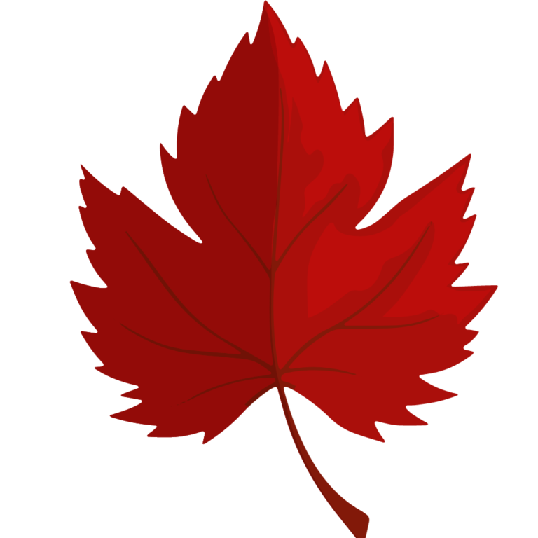 Canadian Examinations Icon CSAE 3416